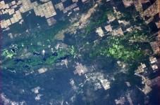 Močvara u Paragvaju